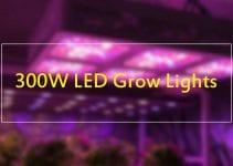 300 watt LED Grow Lights