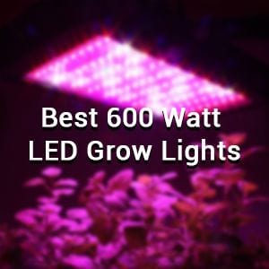 10+ Best 600 Watt LED Grow Lights Of 2019 - [ Grow weed indoor ]