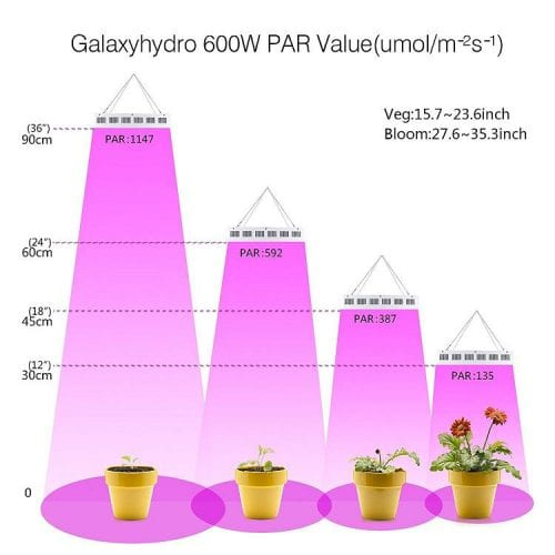 PAR Value from Different Height in GalaxyHydro 600W LED Grow Light