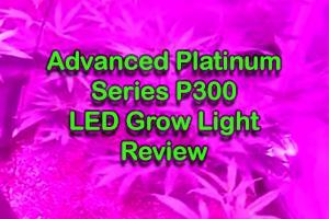 Advanced Platinum Series P300 - Is It Worth Buying