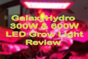 Roleadro GalaxyHydro 300W & 600W LED Grow Light [Complete Review]