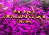 Why A Beginner Should Start with Mars Hydro 600W