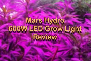 Why A Beginner Should Start With Mars Hydro 600w Detailed Review