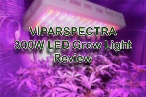 VIPARSPECTRA 300W LED Grow Light - [A Detailed Review]