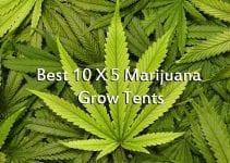 Best 10 X 5 Marijuana Grow Tents 2018 Complete Reviews & Buyer's Guide