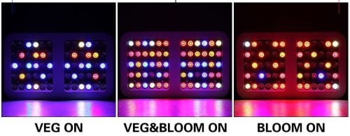 Best LED grow lights under $100