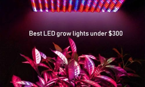 5 Best LED grow lights under $300 Reviews 2019 - [That