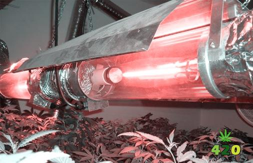High Intensity Discharge (HID) lights.jpg