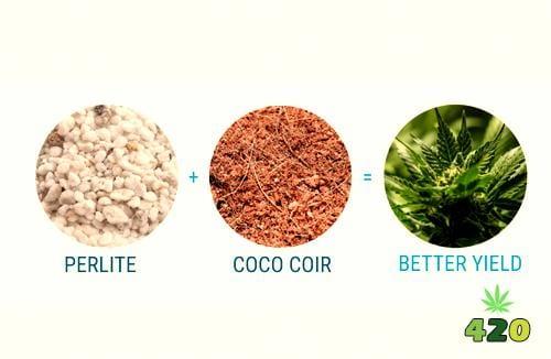 Soilless Mix for Cannabis.jpg