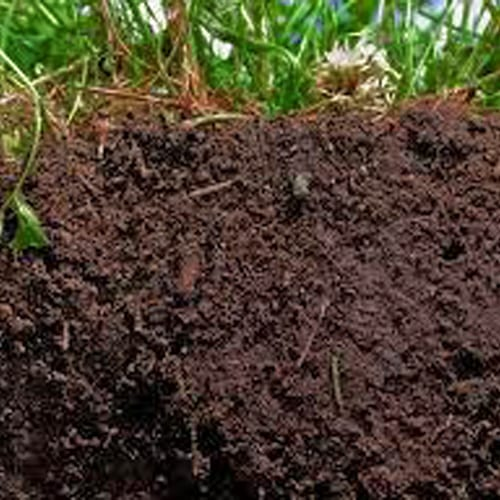 How to Grow with Organic Super Soil 4
