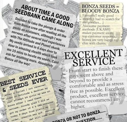 Bonza Seed Bank Review – Lower Than Average Marijuana Prices