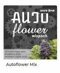 Autoflower Mix by ILGM