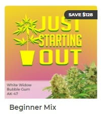Beginner Mix by ILGM