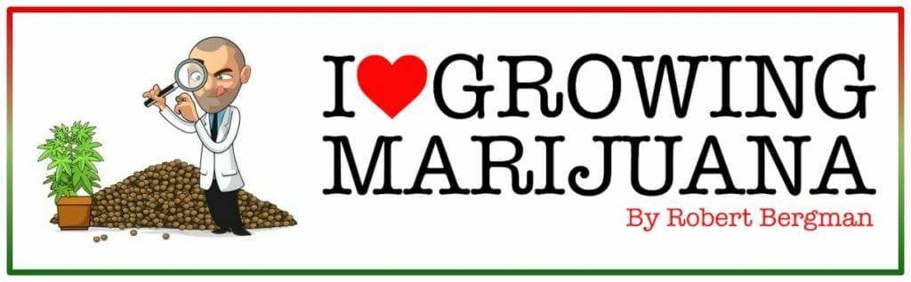 ILoveGrowingMarijuana - ILGM Seed Bank Review