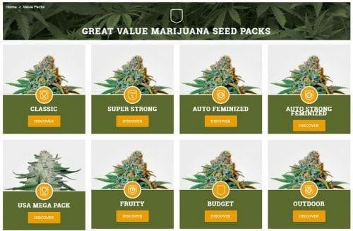 MSNL Value Seed Packs