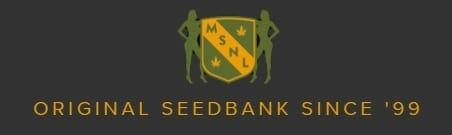 MSNL banner