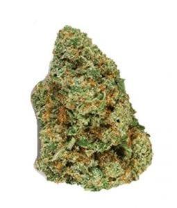 ACDC-cannabis-strain
