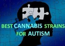 BEST-CANNABIS-STRAINS-FOR-AUTISM-SYMPTOMS