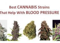 cannabis-strains-for-blood-pressure