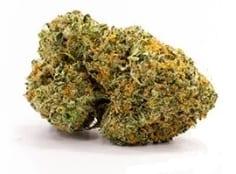 cannatonic-cannabis-strain