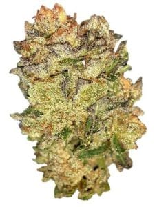 headband-cannabis-strain