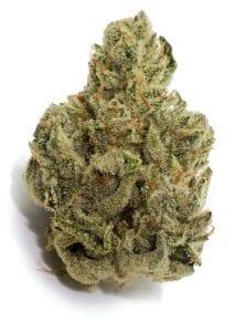 remedy cannabis strain