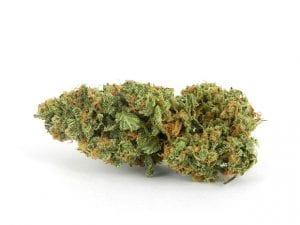 xj13-cannabis
