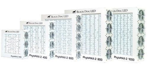 Best LED Grow Lights - Black Dog Series Review