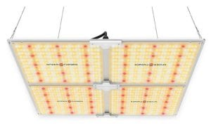 Spider Farmer SF 4000 - Best LED Grow Light