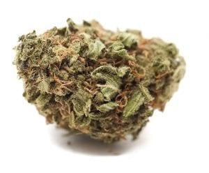 Harle Tsu marijuana strain