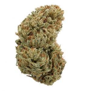 Ringos gift cannabis strain