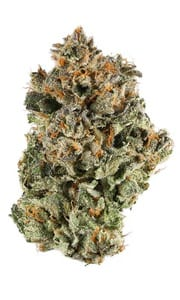 Sunset Sherbet Cannabis Strain Review