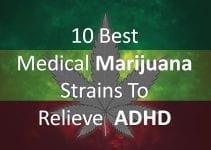best-cannabis-strains-for-adhd