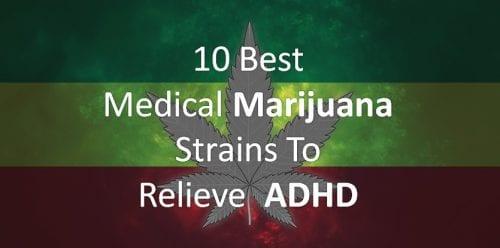 Best Cannabis Strains for ADHD/ADD
