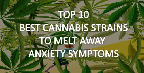 Best cannabis strains for anxiety and stress