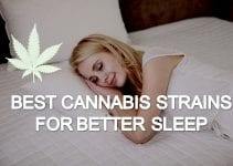 best cannabis strains for better sleep