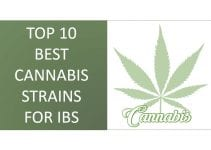 best cannabis strains for IBS featured