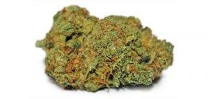 canna-tsu-cannabis-strain