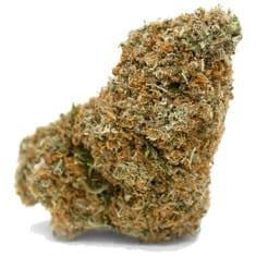 cannadential marijuana strain