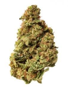 dougs varin cannabis strain