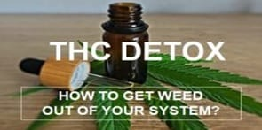 get weed out of your system