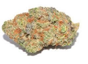 martian candy cannabis strain
