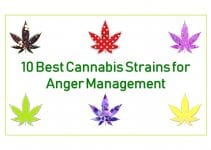 top-10-best-cannabis-strains-for-anger