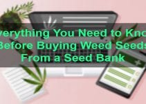 Qualities of seed bank