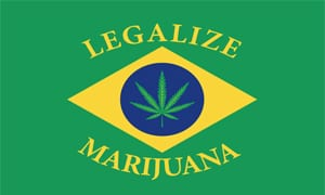 Cannabis seeds in Brazil