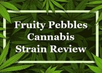 Fruity Pebbles Cannabis Strain Review