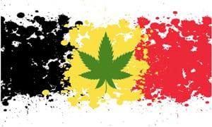 Cannabis seeds in Belgium