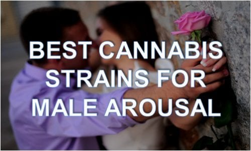 best cannabis strains for male arousal
