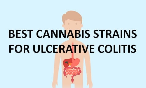 best cannabis strains for ulcerative colitis