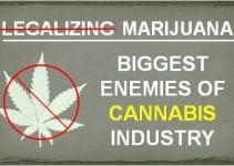 biggest enemies of cannabis industry